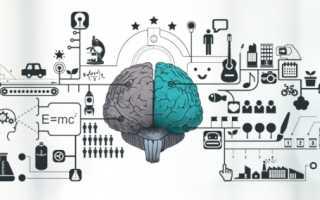 Тренировка мозга и памяти онлайн: как прокачаться на играх, головоломках и приложениях
