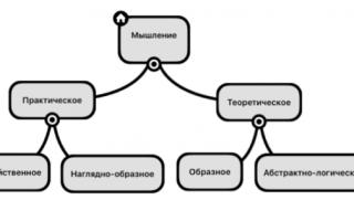 Виды мышления Ї Типы мышлений: классификация характеристика природа и его формы