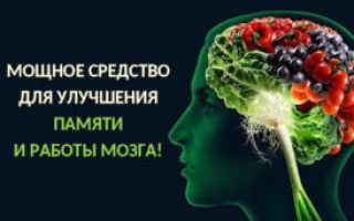 Препараты для улучшения памяти и концентрации внимания: таблетки для ума