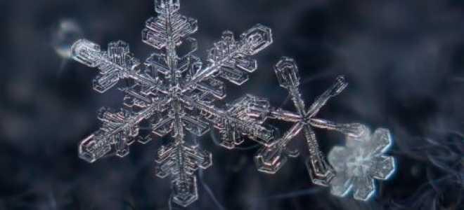 Зима – время чудес и волшебства: подборка фото