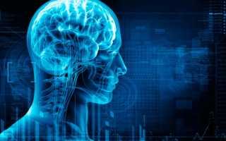 Средства для улучшения памяти внимания и и работы мозга