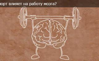 Как спорт влияет на мозг человека