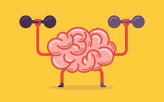 Продукты для улучшения работы мозга и памяти: полезные свойства