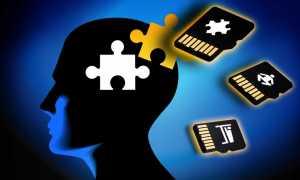 Собственная внутренняя память человека: оперативная человеческая память