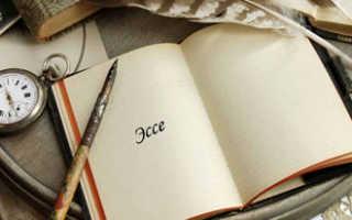 Что такое эссе и как его писать: план и примеры