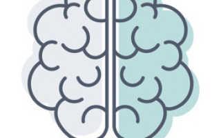 Народные средства для улучшения памяти Чем улучшить память